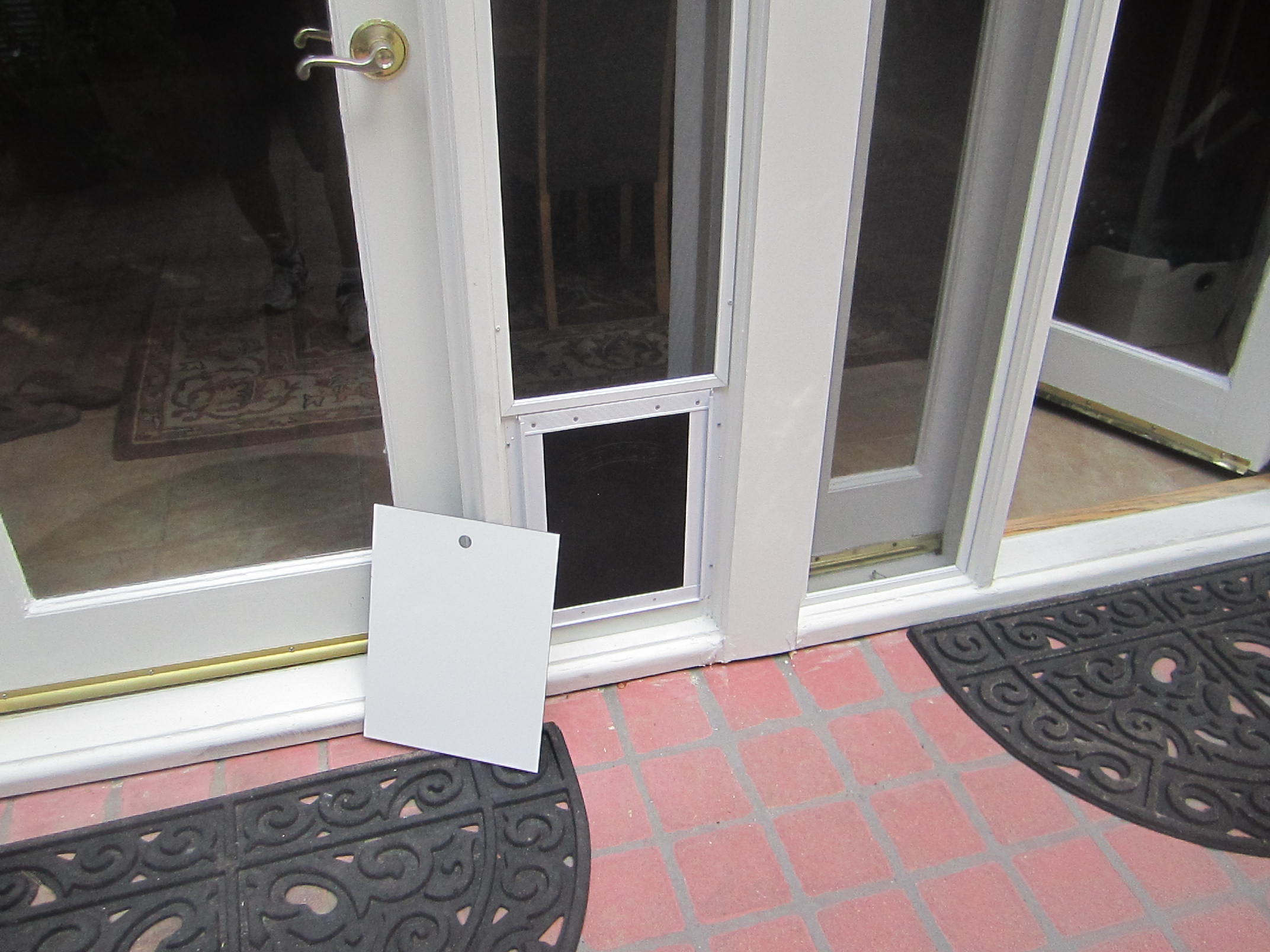 Pet Screen Doors in Calabasas |