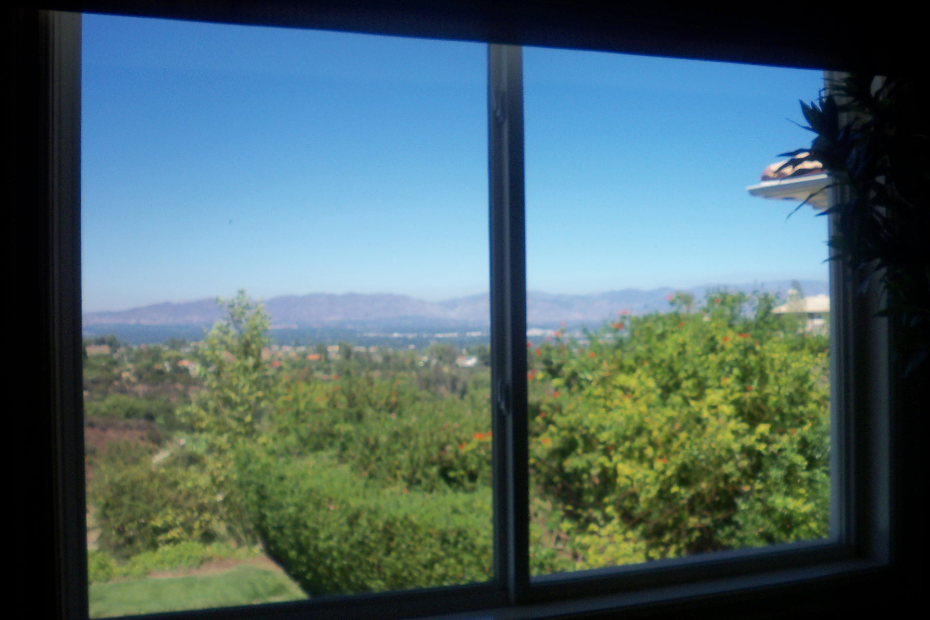 Porter Ranch Window Screens